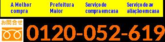 0120-052-619